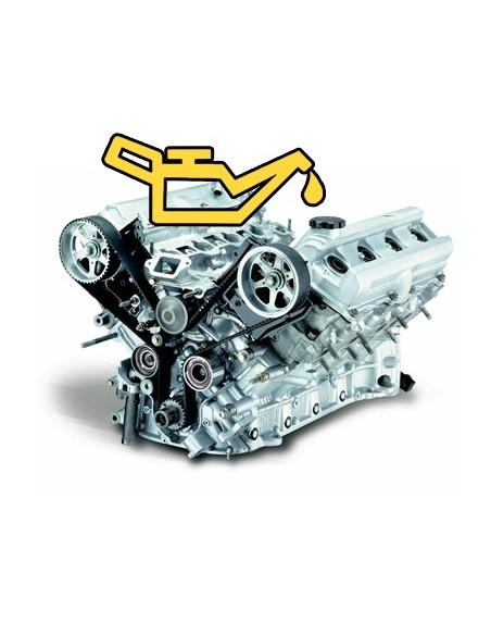 Uleiuri de Motor
