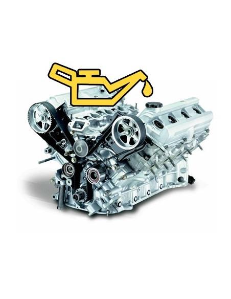Uleiuri motor